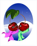 Winter cherry Stock Images