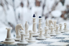 Winter chess pieces Stock Photos