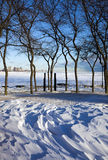 Winter in Chicago Stock Images