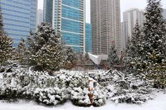 Snowy day in Chicago. Winter Chicago cityscape with downtown skyscrapers in a mist and trees covered by fresh snow on a foreground Royalty Free Stock Image