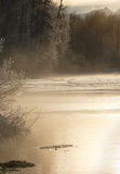 Winter Chilkat River in  sunrise light. Royalty Free Stock Photography