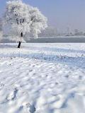 Winter in China, Wusong Island Stock Images