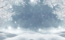 Free Winter Christmas Background Stock Photos - 61163283