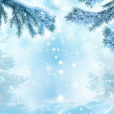 Winter christmas background Stock Photography