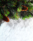 Winter Christmas background. Christmas boarder with fir tree branch with cones on the snow. Winter holidays concept. Royalty Free Stock Image