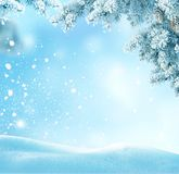 Winter Christmas background with fir tree branch. Royalty Free Stock Photo