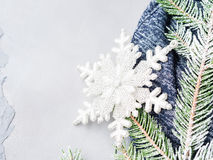 Winter christmas background with fir tree snow branches Royalty Free Stock Photo