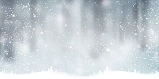 Winter Christmas background with landscape, snowflakes, light, stars. Xmas and New Year card. Vector Illustration vector illustration