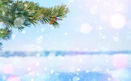 Winter Christmas background. stock photo