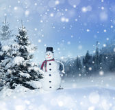 Winter christmas background Stock Photos