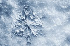 Winter, Christmas background. Snowflake on snow. Winter, Christmas minimal elegant background. Snowflake on snow, blue tint Stock Image