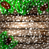 Winter christmas background. Christmas tree and pine on the wooden background Stock Images