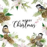 Winter Christmas Birds Greeting Card. Floral Poinsettia Retro Background. Design Template for Holiday Season Celebration Royalty Free Stock Photos
