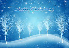Winter Christmas Blue Background . Silhouette of trees christmas landscape Royalty Free Stock Photography