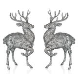 Winter christmas card with deer Royalty Free Stock Photo