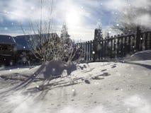 Winter Christmas  card. Snowing landscape.Mountain village Stock Photo