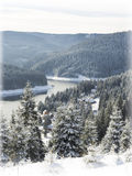 Winter Christmas  card. Snowing landscape.Mountain village Royalty Free Stock Photos