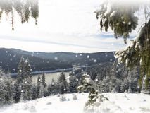Winter Christmas  card. Snowing landscape Royalty Free Stock Photos