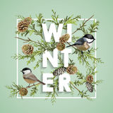 Winter Christmas Design in Vector. Winter Birds with Pines Stock Photography
