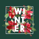 Winter Christmas Design in Vector. Winter Flowers with Pines Stock Images