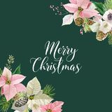 Winter Christmas Flowers Greeting Card. Floral Poinsettia Retro Background. Design Template for Holiday Season Celebration Stock Photo