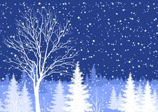Winter Christmas landscape with tree Royalty Free Stock Photos