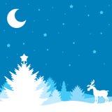 Winter Christmas landscape Royalty Free Stock Photos