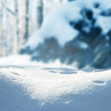 Winter christmas landscape, winter background Stock Image