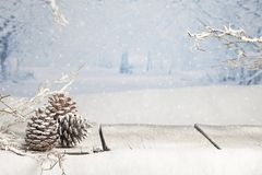 Winter Christmas Scene Stock Images