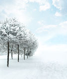 Winter Christmas snow scene Stock Photos