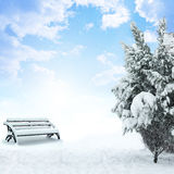 Winter Christmas snow scene Stock Photography