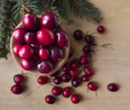 Winter Christmas still life - cranberries in the jug Royalty Free Stock Photography