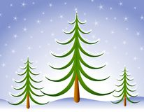 Winter Christmas Tree Scene in Snow stock photography