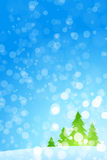 Winter Christmas trees Stock Images