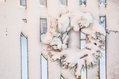 Winter Christmas Wreath Royalty Free Stock Photography