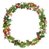 Winter and Christmas Wreath Garland. With traditional natural flora and fauna of the season on white background royalty free stock photo