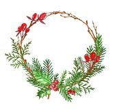 Winter Christmas wreath with pine and fir stems, red berries. Holiday decor, isolated on white background royalty free illustration