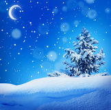 Winter christmass night landscape Royalty Free Stock Photo