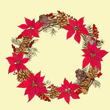 Winter circlet of flowers with fir cone. And red berries Stock Photos