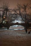 Winter in Cismigiu-Park Stockfotografie