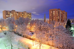 Winter in city. Winter scenery with trees covered in snow in Warsaw, Poland Stock Images