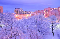 Winter in city. Winter scenery with trees covered in snow in Warsaw, Poland Royalty Free Stock Image