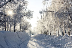 Winter city alley. Winter frosty morning city alley Royalty Free Stock Photography