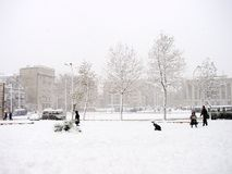 Winter in city Royalty Free Stock Photos