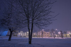 Winter city landscape. Frozen trees and buildings. Cold night. Royalty Free Stock Photos