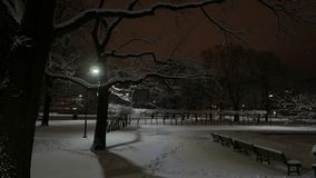 Winter in a city. Night at the park. 4K UHD. Native video stock footage