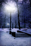 Winter city park Stock Images