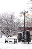 Winter in city park Stock Photo