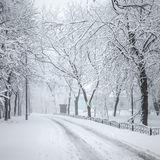 Winter city park Royalty Free Stock Photography