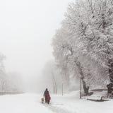 Winter city park Royalty Free Stock Photography